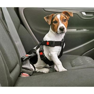 Karlie Auto-Sicherheitsgurt XL