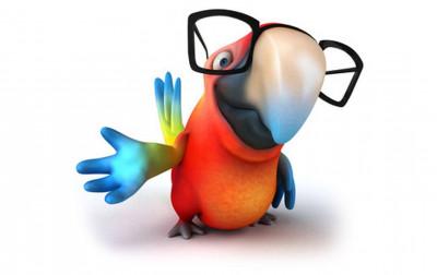 Papagei Flori erzählt tierische Gedichte und Geschichten